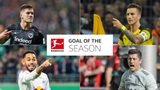 Vote for the 2018/19 Goal of the Season!