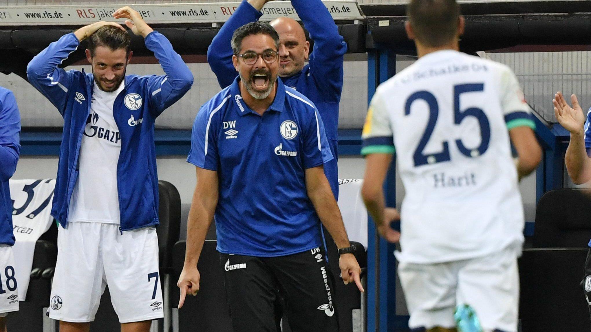 04 >> Fc Schalke 04 Bundesliga