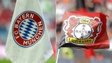 What's the difference between Bayern and Bayer?